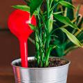 Автополив растений
