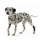 Товары для ветеринарных клиник