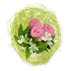 Флористические каркасы