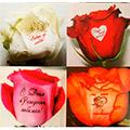 наклейки для цветов и сувениров