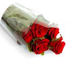 пленки для цветов к 1 Сентября