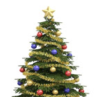 Christmas Trees & Christmas Decorations