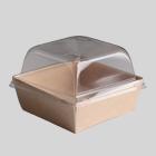 Упаковку для готовых блюд и салаов