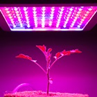 фитолампы для растений