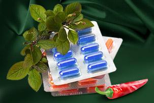 Bioactive Supplements