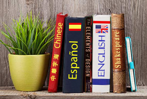 Literature in a foreign language
