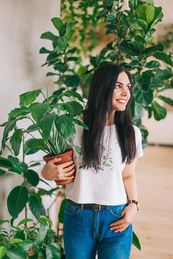Озеленение квартиры комнатными растениями