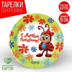 Тарелка бумажная «С Днём Рождения!», божья коровка, 18 см