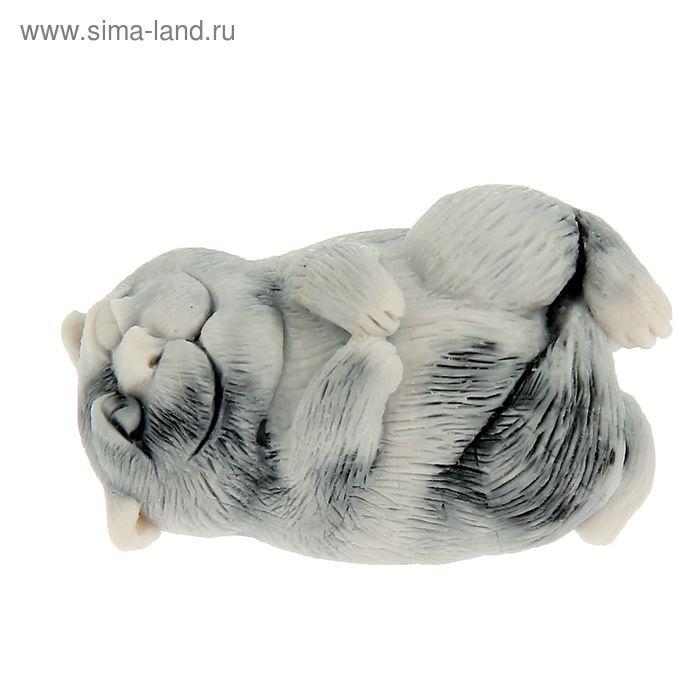 "Сувенир ""Чеширский кот на подушке (шарж)"""
