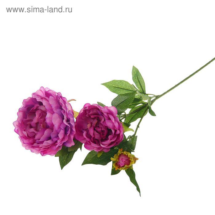Цветы искусственные Королевский пион 72 см сиреневый