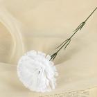 Цветы искусственные гвоздика 37 см белый
