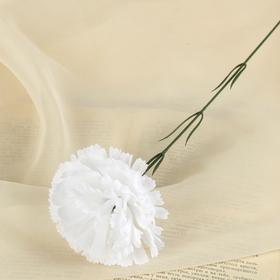 Цветы искусственные гвоздика 37 см белый Ош