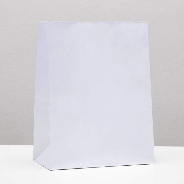 Пакет бумажный фасовочный, белый, прямоугольное дно 22 х 12 х 29 см - фото 308015594