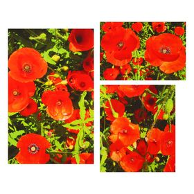 """Модульная картина на подрамнике """"Маковый полдень"""", 45×70, 45×30, 40×45 см, 140×45"""