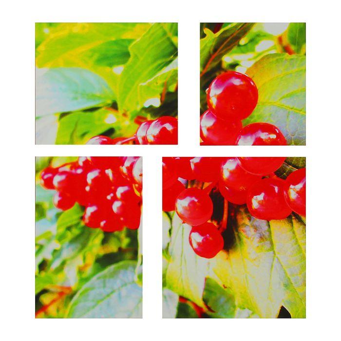 "Модульная картина на подрамнике ""Калина"", 40×35, 30×35, 40×45, 30×45 см"