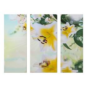 """Модульная картина на подрамнике """"Лилия в отражении"""", 25×65, 30×65, 25×65 см 80×60 см"""