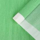 Бумага креп, с белым верхом, цвет зелёный, 0,5 х 2,5 м