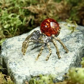 "Souvenir ""Spider"""