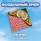 Воздушный змей «Тигр», с леской - фото 994619