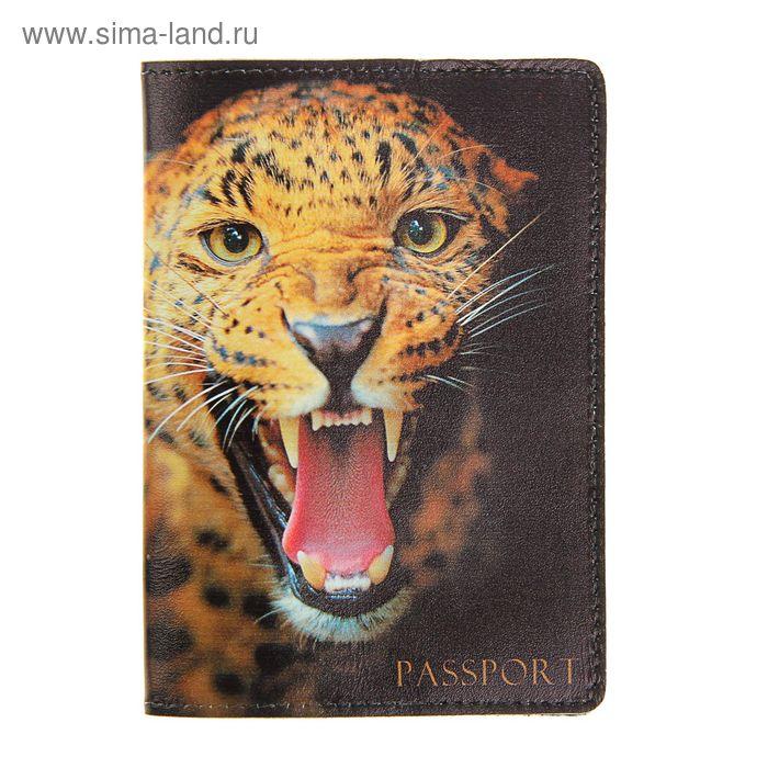 """Обложка для паспорта """"Гепард"""", фотопечать"""