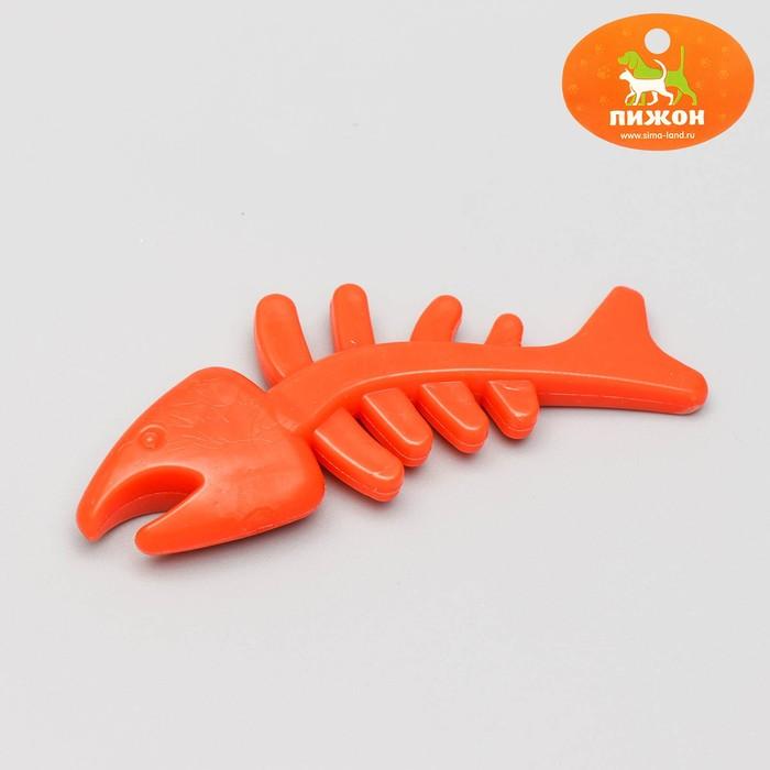 """Игрушка жевательная """"Планктон"""" прозрачная, PP, 12,5 см, микс цветов"""