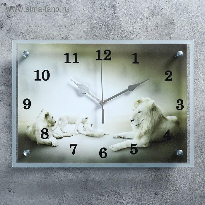"Часы настенные прямоугольные ""Белые львы""25х35см"