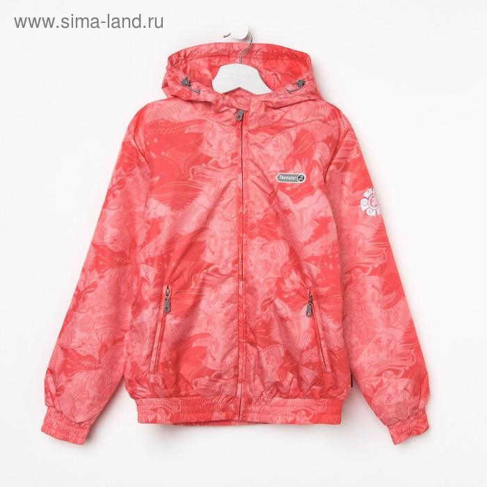 Куртка для девочки, рост 146-152 см (80), цвет коралл ТФ 32008/2 ТР