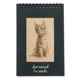 Блокнот для эскизов А5, 50 листов «Котёнок», 70 г/м²