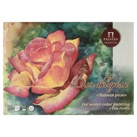 Планшет для акварели А3, 20 листов «Палаццо. Чайная роза», блок 200 г/м², холст