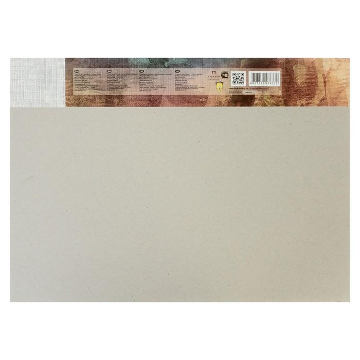 Планшет для акварели А3, 20 листов «Палаццо. Чайная роза», блок 200 г/м², холст - фото 369520569