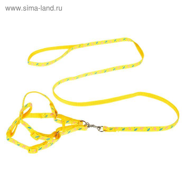 """Комплект """"Зонтики"""", ширина 1 см, поводок 120 см, шлейка 26-41 см, желтый"""