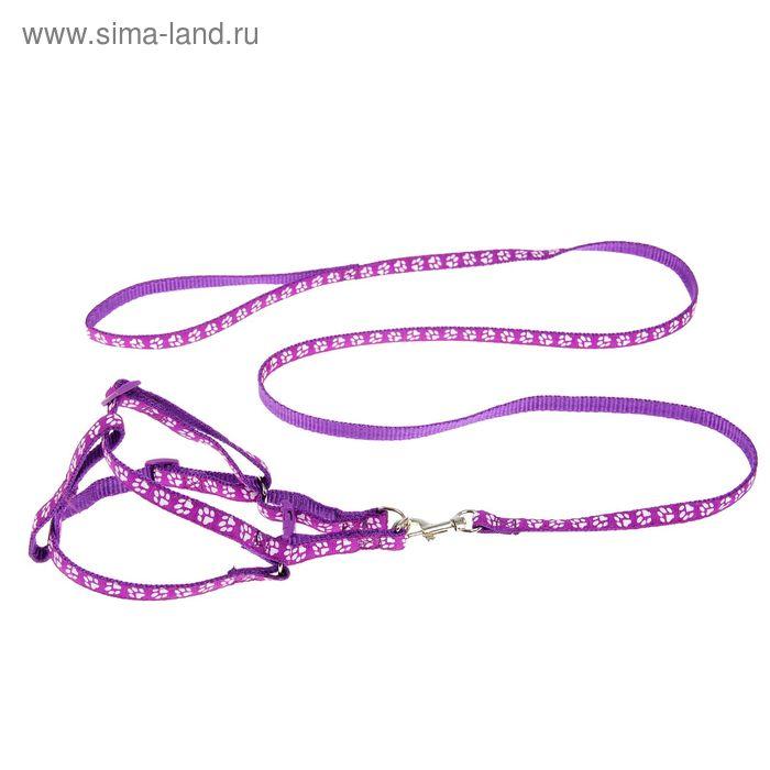 """Комплект """"Лапки"""", ширина 1 см, поводок 120 см, шлейка 26-41 см, фиолетовый"""