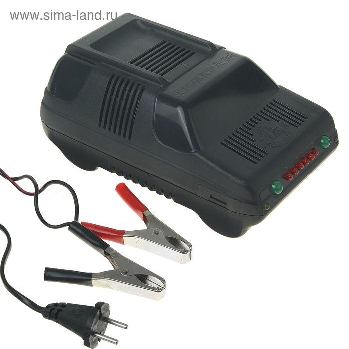 """Зарядное устройство для АКБ """"Триада-10"""", 6 А, до 90 Ач, 12 В, с индикацией окончания заряда"""