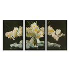 """Модульная картина в раме """"Белые орхидеи на чёрном"""", 3 шт. — 36×53 см, 53×108 см"""
