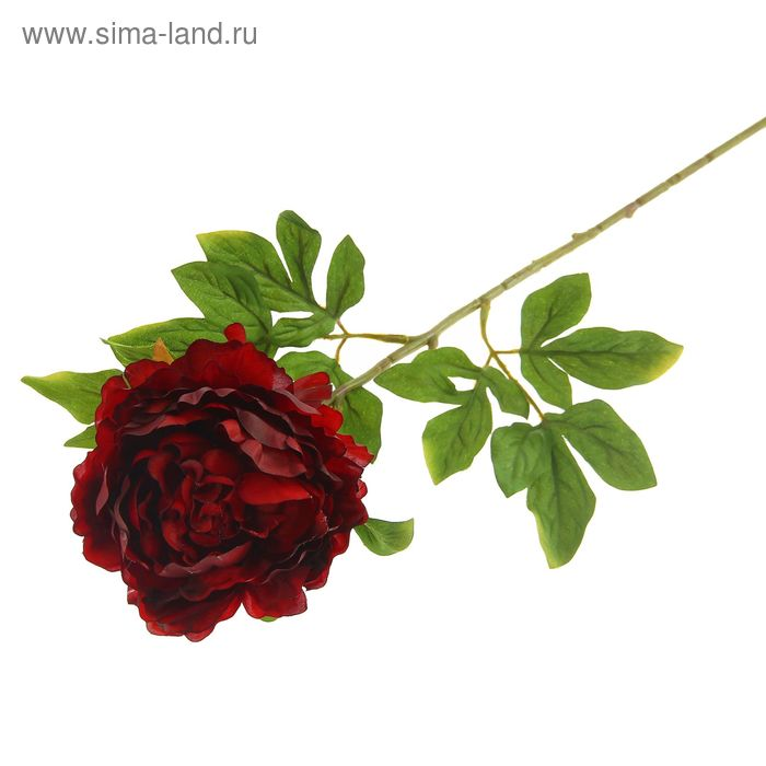 """Цветок искусственный """"Пион"""" бордовый"""