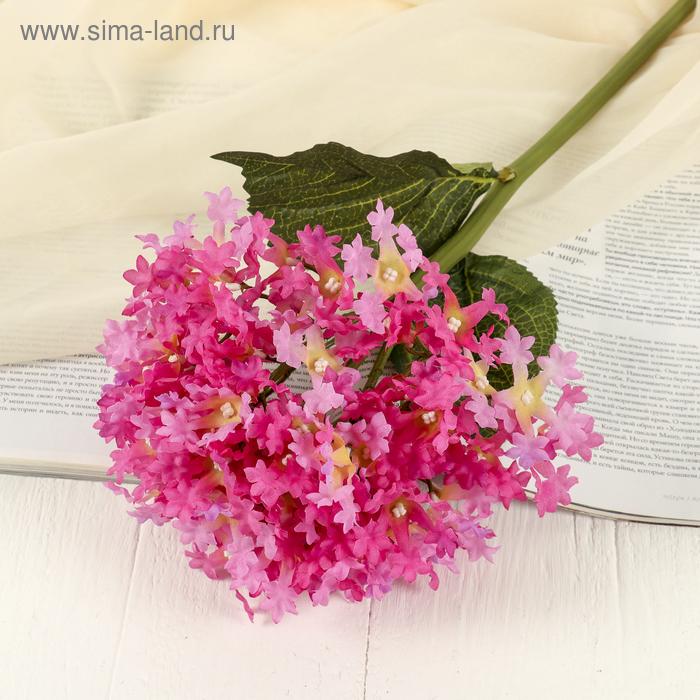"""Цветы искусственные """"Алиссум"""" розовый"""