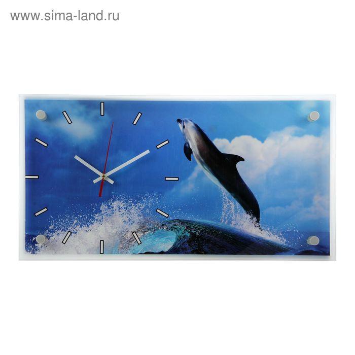 """Часы настенные прямоугольные """"Дельфин"""", 53х27 см"""