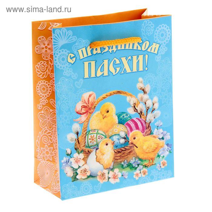 """Пакет ламинат вертикальный """"С праздником Пасхи!"""", 11 х14 см"""