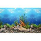 Фон для аквариума, 40 см, рулон 25 м