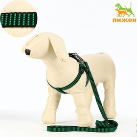 Set of armor and weapons raised, 1.5 cm, harness 36-49 cm, the leash 120 cm, green-black