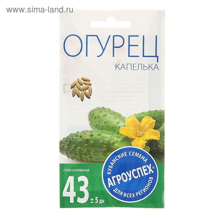 Семена Огурец Капелька, средний, пчелоопыляемый, 0,3 гр