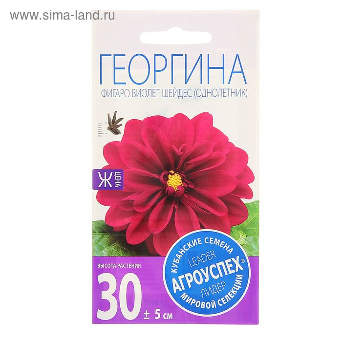 Семена цветов Георгина Фигаро Виолет Шейдес, однолетник, 7 шт