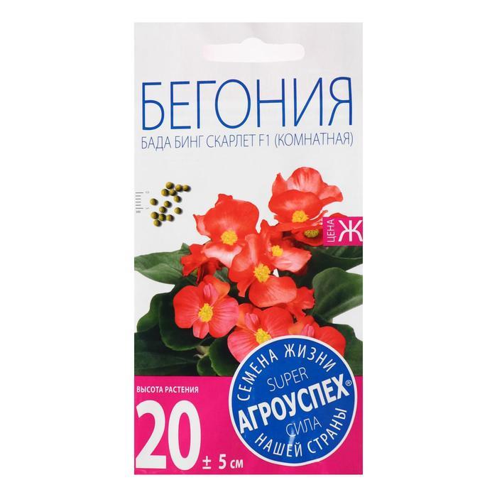 Семена цветов Бегония Бада Бинг Скарлет, вечноцветущая, однолетник, 10 шт