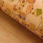 """Набор бумаги упаковочной крафт """"Совы бурые"""" 50 х 70 см, 10 листов"""
