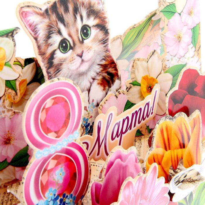 Картинки котики с 8 марта