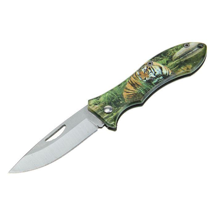 Нож перочинный лезвие drop-point 6,5см, рукоять Тигр, крепление на ремень 15см