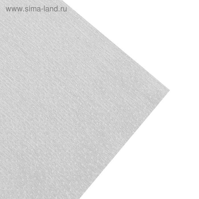 Флизелин клеевой точечный, 42,5г/кв.м, 50х100см, цвет белый