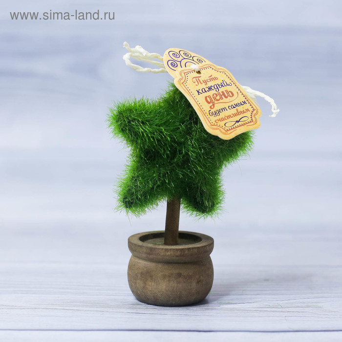 Декоративное мини–дерево «Пусть день будет счастливым», 11,2 х 7,2 см