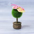 Декоративное мини–дерево «Для самой цветущей», 11,2 х 7,2 см