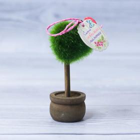 Декоративное мини–дерево «Любимой мамочке», 11,2 х 7,2 см Ош